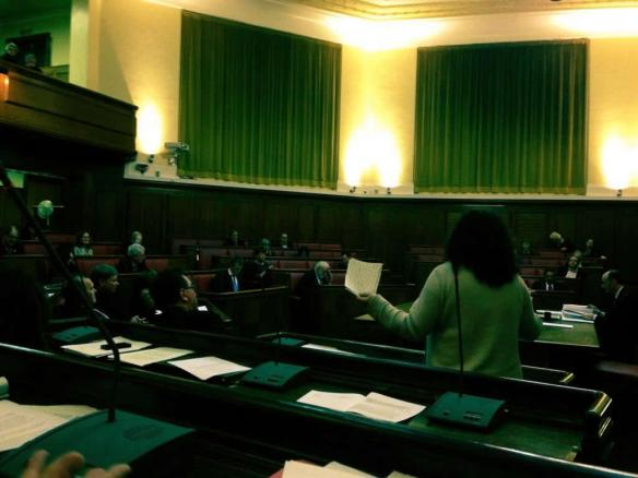 In the Council chamber speaking in the debate on Planning. Credit: Cllr Peter Carpenter ‏@RoehamptonCllr